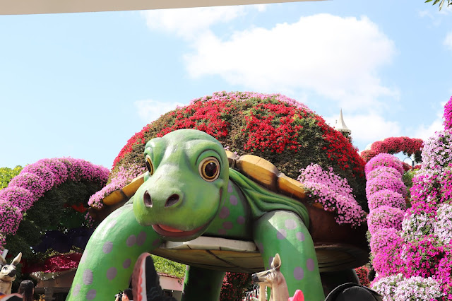 #TheLifesWayCaptures - Miracle Garden #Dubai #UAE Continues - #PhotoReviews