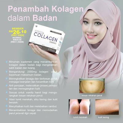 Cocoa Collagen sendayu tinggi