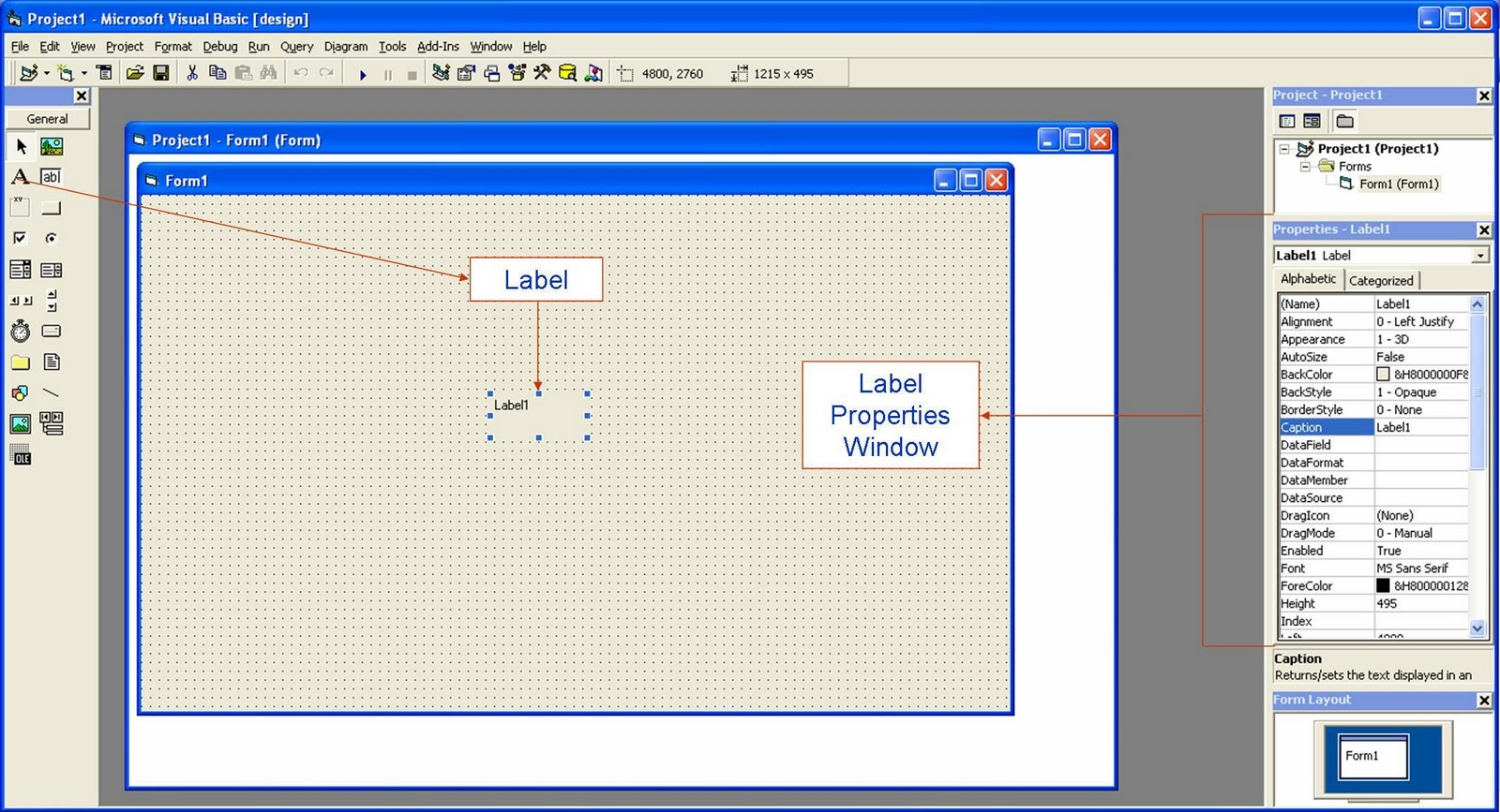 Visual Basic 6 0 Tutorials Code & Project For Beginners: Label