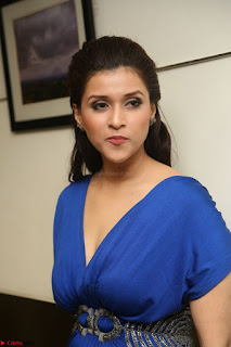 Mannara Chopra in Short Blue Dress at Rogue Movie Teaser Launch 1st March 2017 076.JPG