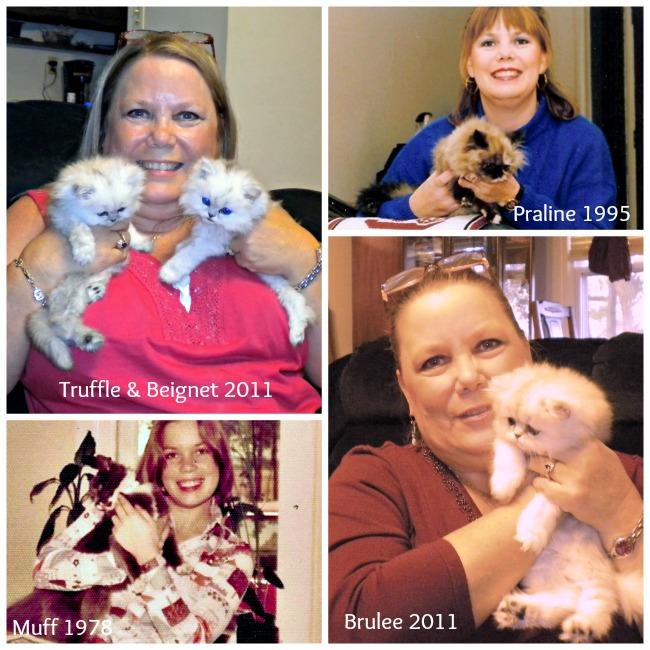 Paula and kittens