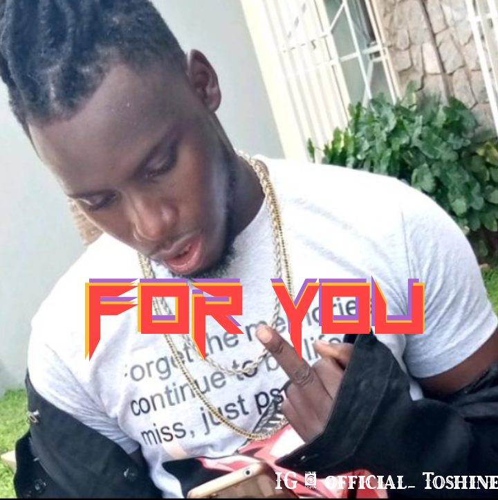 Music: Toshine - for you