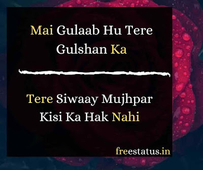 Mai-Gulaab-Hu-Rose-Day-Shayari