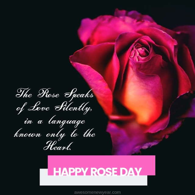 Rose Day 2019 Quotes