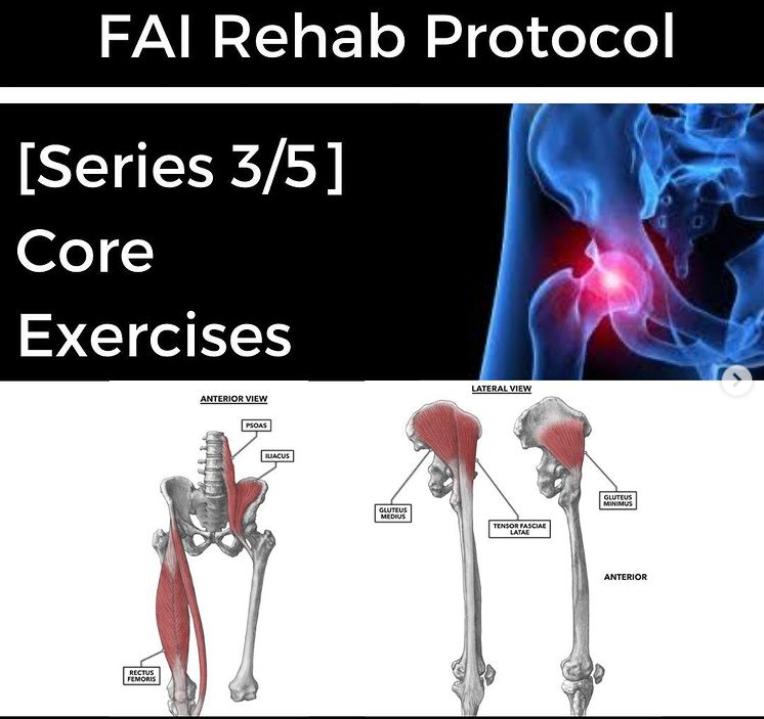 FAI Rehab Protocol Part 3 - Core Exercises - themanualtherapist.com