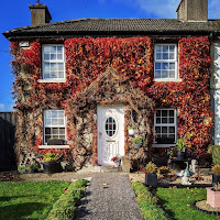 Images of Ireland: Ivy covered home in Kilkenny