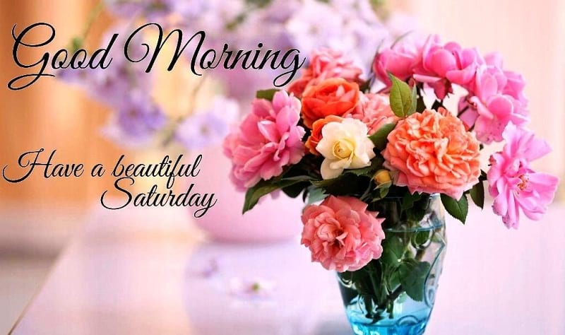 Beautiful Saturday Good Morning Flowers Wishes and Blessings