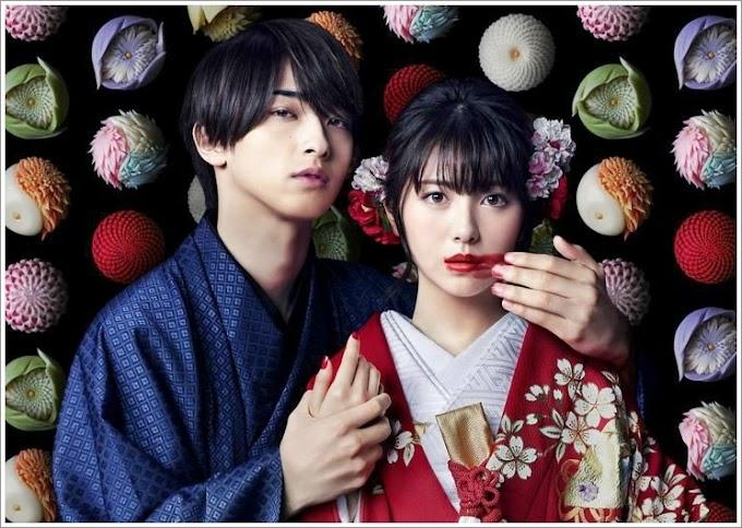 Drama Jepun | Watashitachi wa Douka Shiteiru (2020)