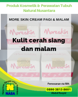 Moreskin Krim Malam /Night Cream Pemutih Wajah Kinclong