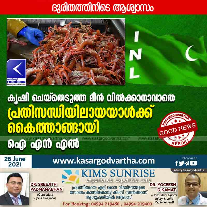 Kasaragod, Kerala, News, Lockdown, Agriculture, Panchayath, Committee, District, INL lends a helping hand to a person in crisis who is unable to sell his farmed fish.