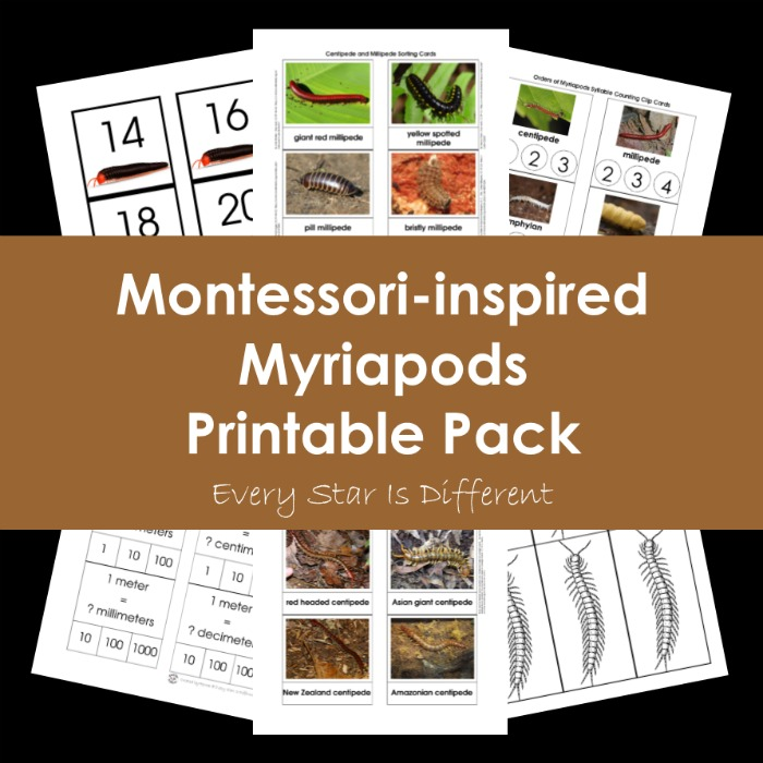 Montessori-inspired Myriapods Printable Pack Bundle