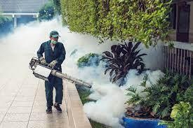 Phun muỗi tại huyện Đông Anh