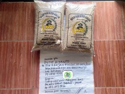 Benih padi yang dibeli PUTUT RIYANTO Malang, Jatim (Sebelum packing karung ).