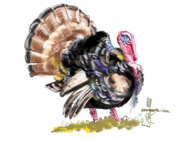 Turkey bird painting by Ulf Artmagenta