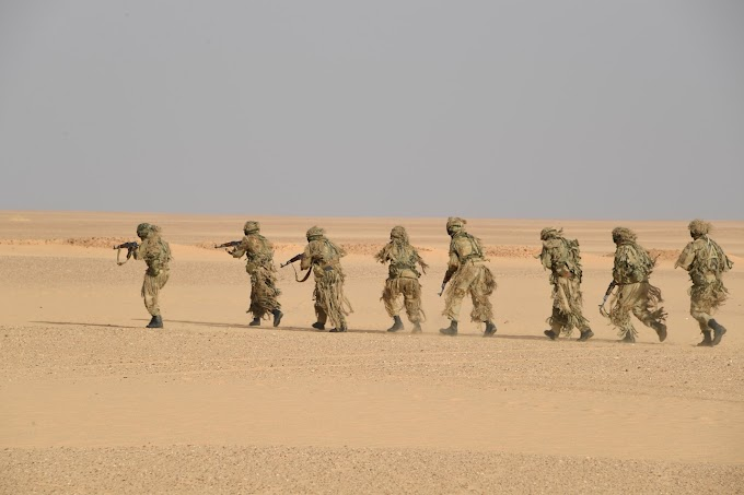 El Ejército argelino ejecuta maniobras militares en la frontera argelino-nigerina bajo la supervisión del Jefe del Estado Mayor.
