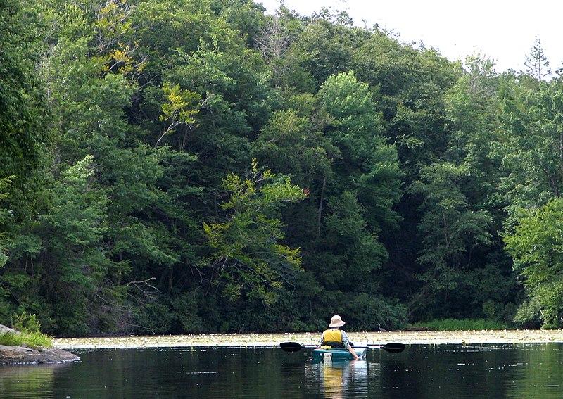 Wawayanda State Park New Jersey
