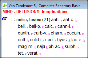 MIND - DELUSIONS, imaginations - noise, hears