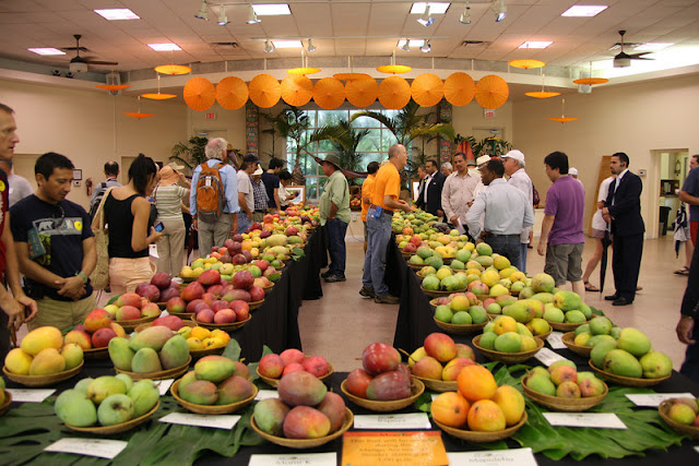 International Mango Festival em Miami