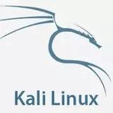 Kali linux 2019.3 ISO