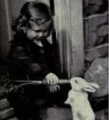 baby feeds bunny