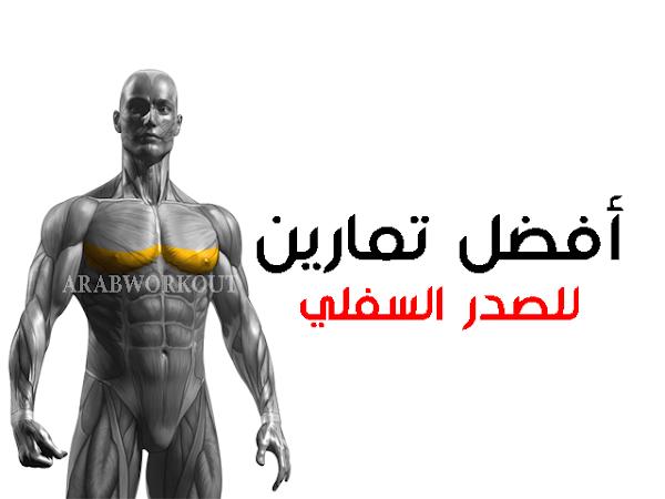 تمارين الصدر السفلي