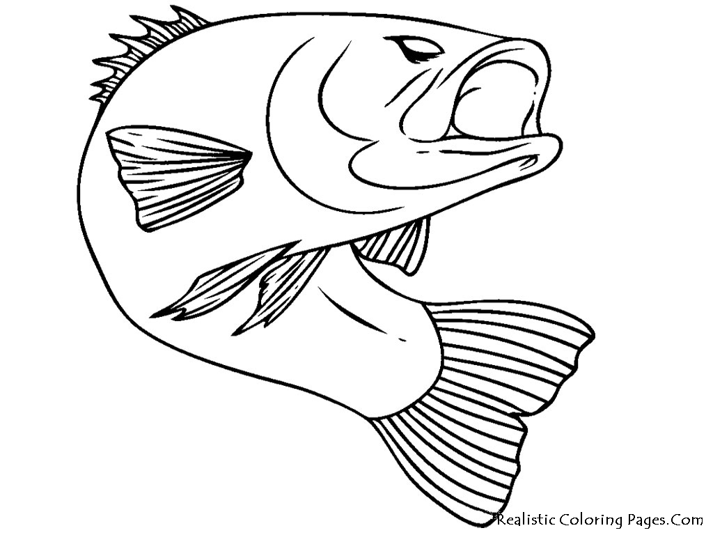 Fish Realistic Coloring Pages