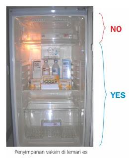 penyimpanan vaksin dilemari es yang benar