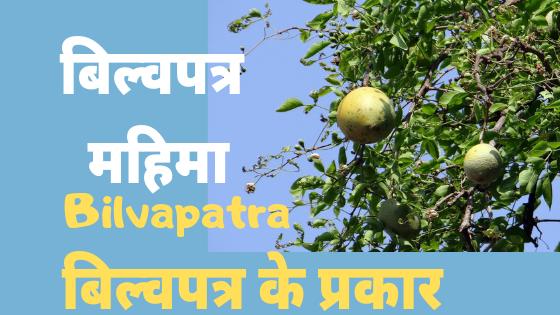 बिल्वपत्र की महिमा | बेलपत्र के प्रकार | Bilvapatra Mahima |