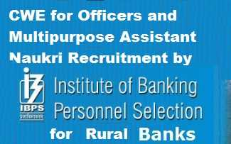 RRB CRP by IBPS for Rural Banks Recruitment
