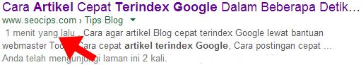 Artikel Cepat Terindex Google