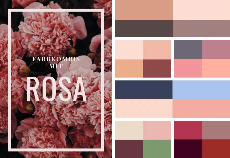 Farbschema Rosa richtig kombinieren, welche Farben passen zu Rosa?