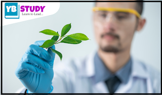 What is Biotechnology | Scope | Application