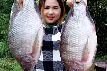 Awesome Cooking Big Fish – Grilled Fish Recipe Prepared Beautiful Girl Cooking Village Food Factory
