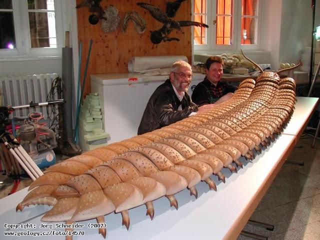loài chân đốt khổng lồ Arthropleura