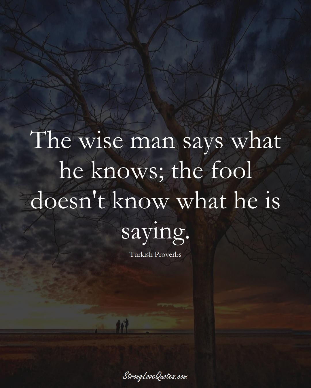 The wise man says what he knows; the fool doesn't know what he is saying. (Turkish Sayings);  #MiddleEasternSayings