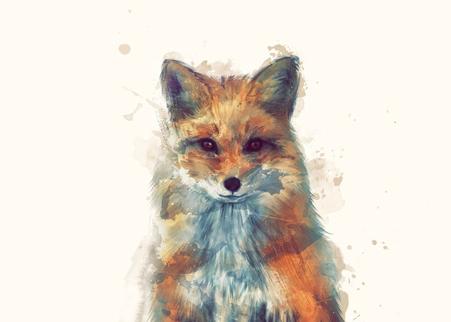 Fox Amy Hamilton