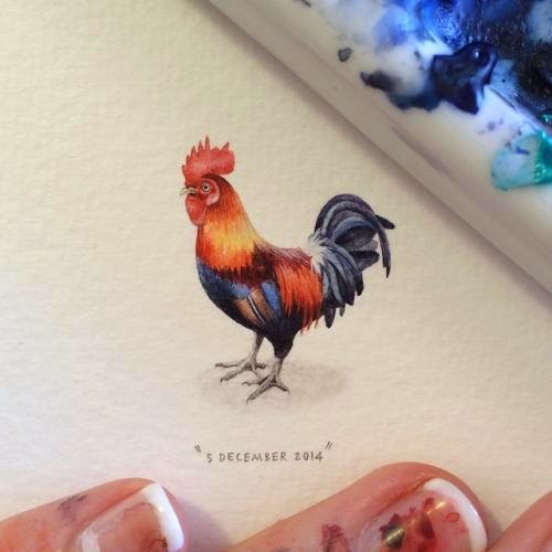 16-Cockerel-Lorraine-Loots-Miniature-Paintings-Commemorating-Special-Occasions-www-designstack-co