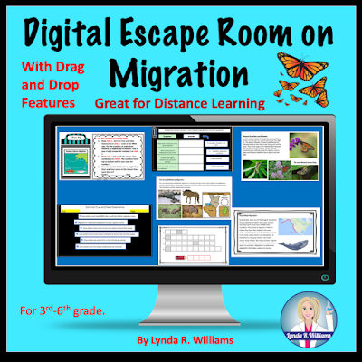 escape room on migration