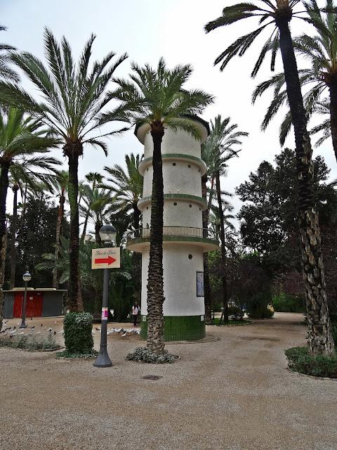 widok na gaj palmowy w Elche, Hiszpania