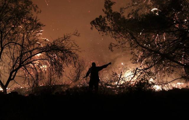 Υπό έλεγχο η φωτιά στην Ιστιαία, μάχη με τις φλόγες στα Ψαχνά