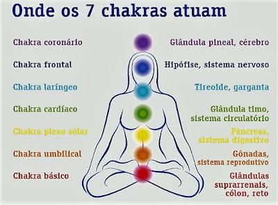No corpo também temos sete pontos vibracionais que regem determinados sistemas e que também são afetados positiva ou negativamente