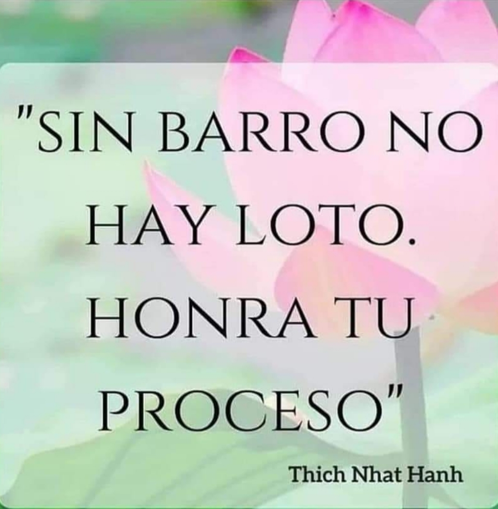 Casa Las Lagunetas Crecimiento Personal Frases Thich Nhat