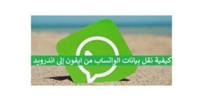 Transfer-WhatsApp