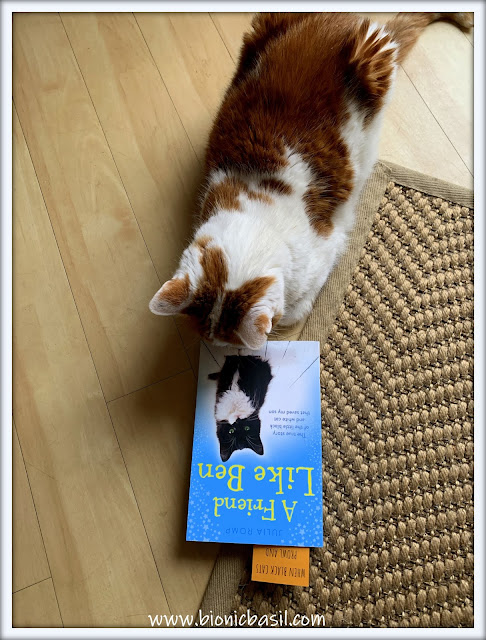 Book Reviews with Amber #167 ©BionicBasil® A Friend Like Ben Amber's Purrsonal Copy