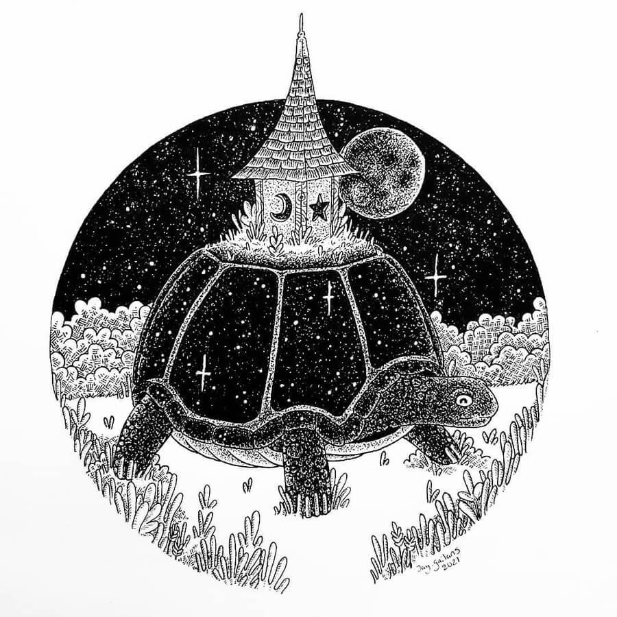 07-The-magical-tortoise-Jason-Gailans-www-designstack-co