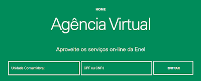 Imagem da Pagina de acesso a Agência Virtual Enel Goiás