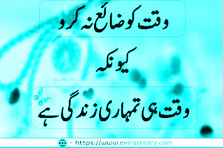 Funny shayari in hindi urdu Status