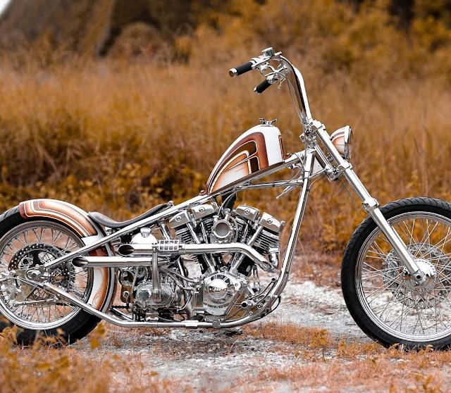 Harley Davidson Shovelhead By It'll Ride Choppers Hell Kustom