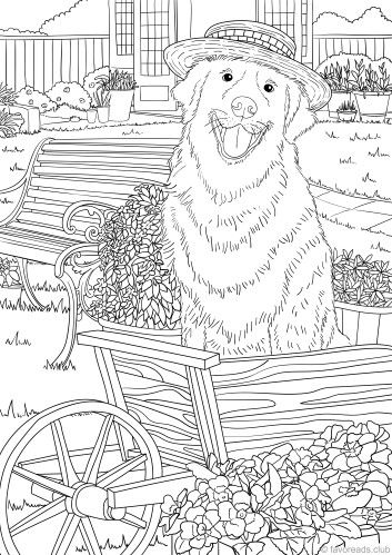 Dogs coloring pages 32
