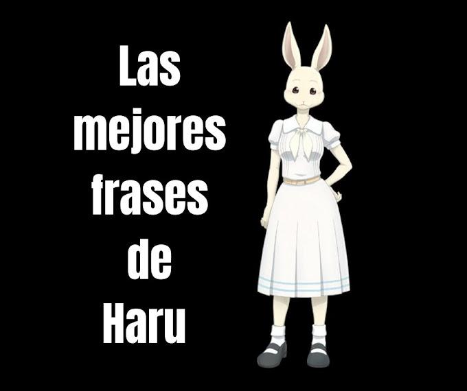 Las mejores Frases De Haru, Beastars